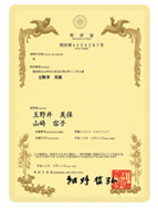 img_patent
